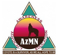 11th Annual Arizona Myeloma Network's Living with Myeloma Conference: Partnering with the Cure Corridor
